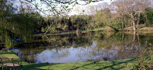 Picture of Newnham Farm pond