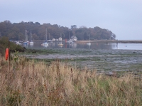 Wootton Creek Estuary