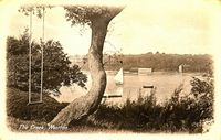 View of the creek from Fishbourne circa 1910
