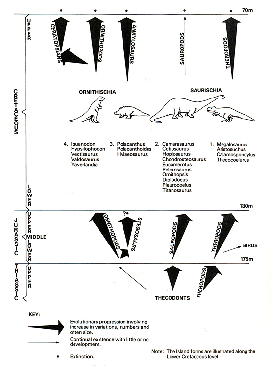 Diagram of Evolution of Dinosaurs