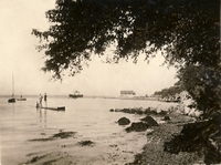 The beach at Fishbourne c1950