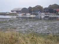 Looking across the creek to Ranelagh Works at low tide