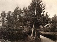 The Green, Fishbourne circa 1920