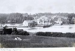 The Creek and Mill 24 May 1895 [Towill]