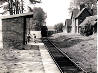 Ashey Station [date unknown]