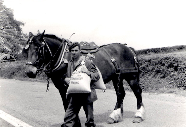 Picture of Colin Langridge at Briddlesford Farm 1948
